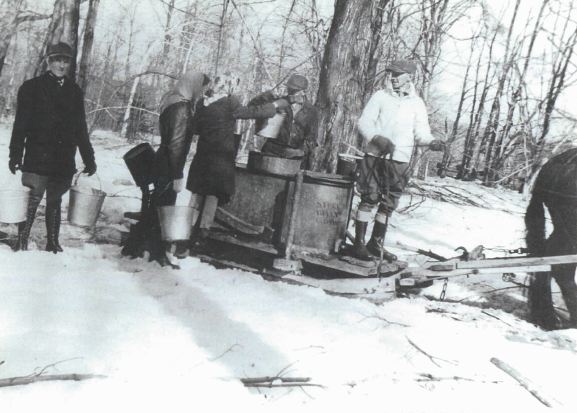 Background-maple-sap-gathering-plainfield-massachusetts-joe-dufresne